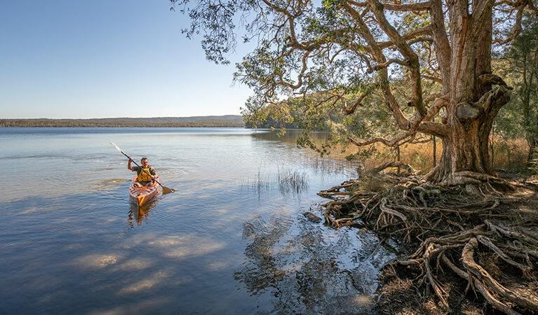 Man rowing at the Myall Lakes National Park