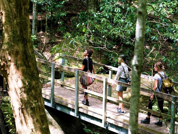 Women walking at the Watagans National Park
