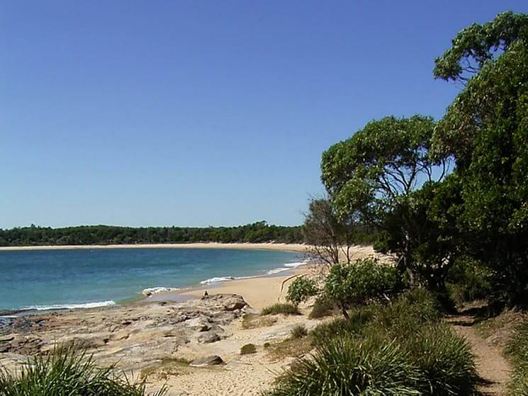 A view of the nature of the Jibbon Beach Bundeena